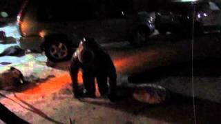 Сантехник спускается в колодец, чтобы прочистить канализацию в Бердске(, 2016-01-11T15:34:02.000Z)