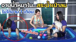 ไม่ได้อาบน้ำ 1 เดือน !! อาบน้ำให้หมาในสระน้ำเป่าลม...เละเทะกันทั้งบ้าน | MJ Special