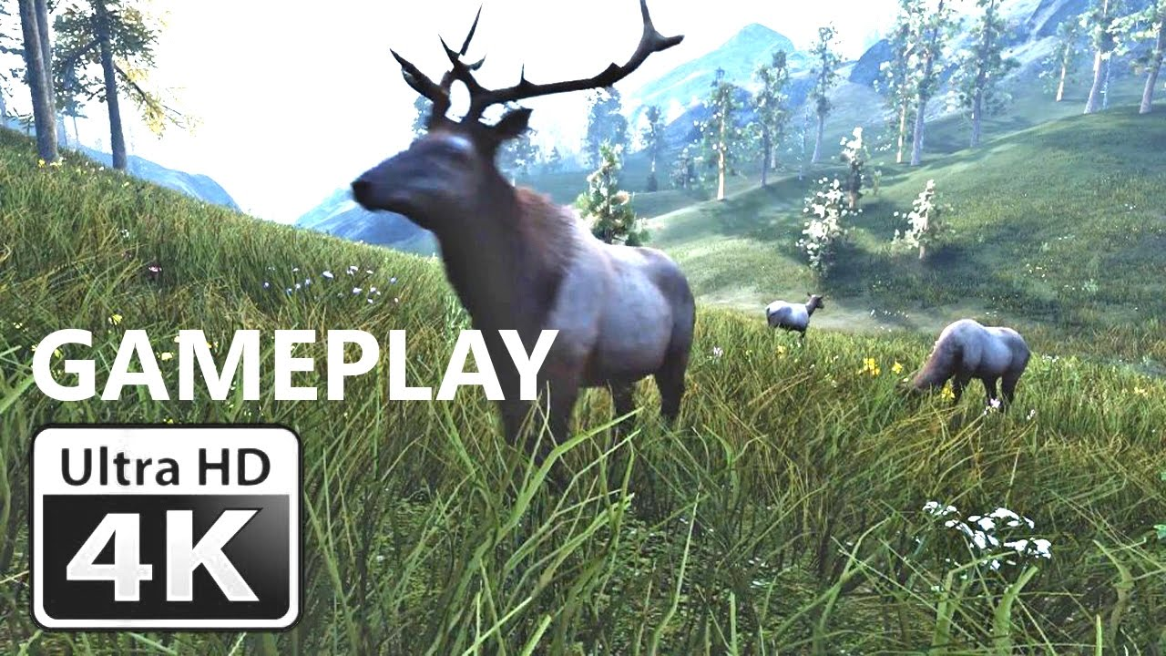 Hunting Games For Xbox 1 : Hunting simulator bestiary gameplay trailer k pc ps