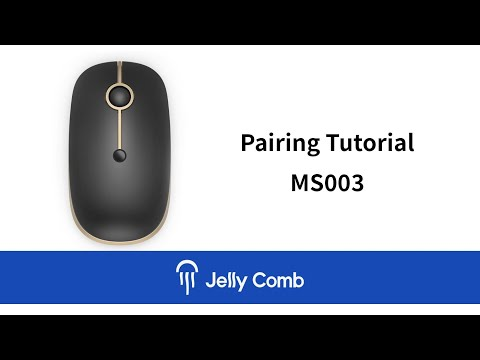 Jelly Comb MS003 Bluetooth & Wireless Mouse Pairing Tutorial