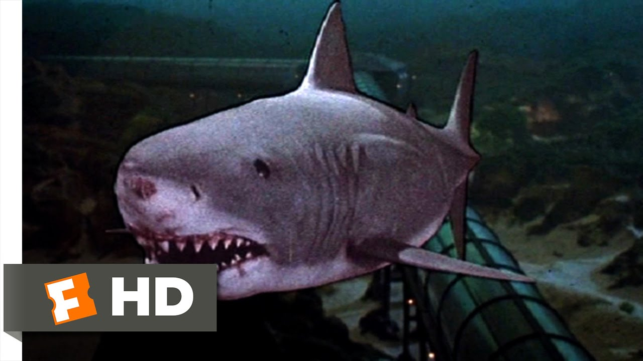 jaws 3d 99 movie clip the exploding shark 1983 hd