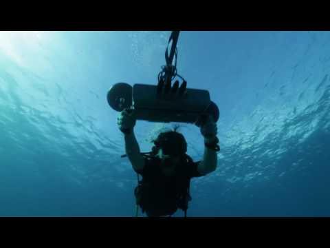 Podvodní mikrofony Ambient Recording Sonar Surround