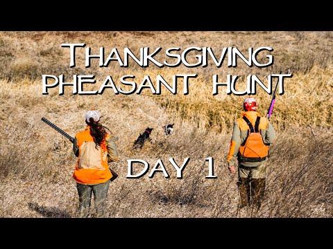 South Dakota Pheasant Hunting 2019 - Thanksgiving Week Day 1