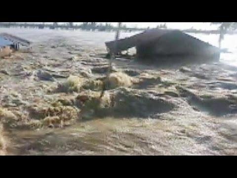 Typhoon-struck Coron mayor in Philippines appeals for emergency help