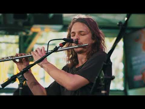 Descargar MP3 King Gizzard & The Lizard Wizard - Han-Tyumi The Confused Cyborg (Live on KEXP)