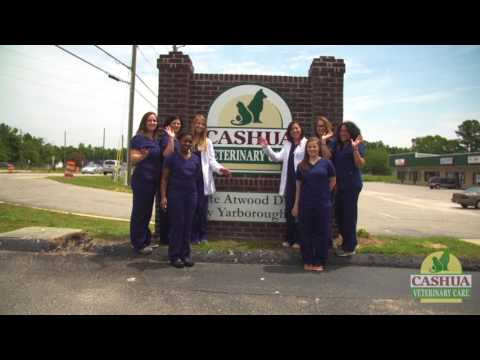 Cashua Veterinary Care - Short |  Florence, SC