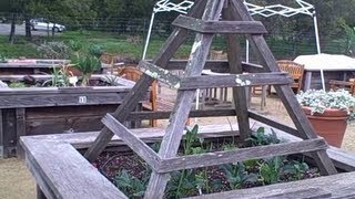 Accessible Raised Bed Garden For Seniors Allow Them To Grow Food