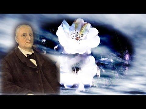 Bruckner - Symphonie Nr. 4 / Anton Bruckner / Klassik / Best of Classical Music /  Musik