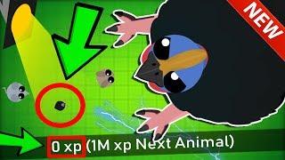 【mope.io mini cassowary】「mope.io mini cassowary」#mope.io mini cassowary,MOPE.IO*ZERO*XPC...