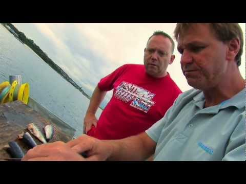 Catching LIve Bait For King Fish | The Hook And The Cook