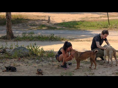 Shannon's Internship in Thailand