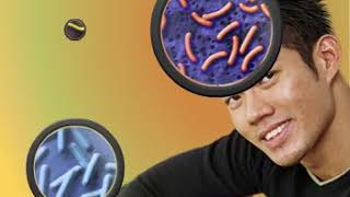 Fakta om bakterier