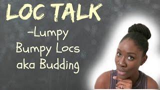 Why Are My Locs Lumpy and Bumpy? | LOC TALK| Budding