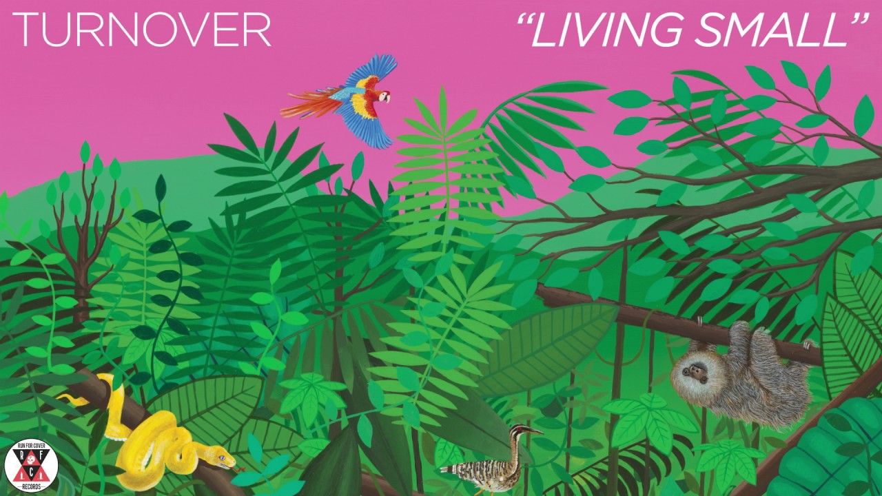 turnover-living-small-official-audio-run-for-cover-records