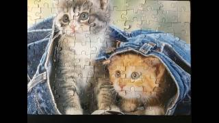 Solving the Two Cute Kittens Kids Fun Puzzle - 100 Pieces
