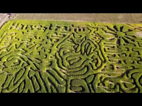Harvest Farm Fall Festival & Corn Maze | Aerial View