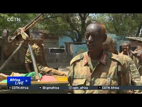 Pro-government militia supporting army to secure regions in Somalia