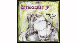 Watch Dinosaur Jr Show Me The Way video