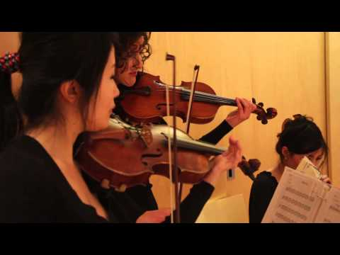Paint It Black Cover for String Quartet - by Amara Strings