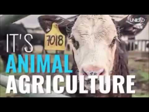Cowspiracy is one of the most powerful films ever on the ecological collapse.