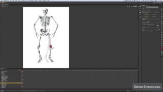 Adobe Animate CC - Kemik Aracı Animasyon