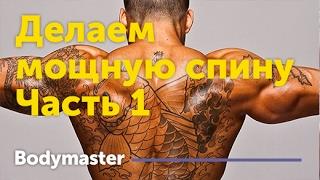 Как накачать спину (Тренировка №1) Делаем мощную спину(Как накачать спину (Тренировка №1) Делаем мощную спину Узнать больше https://goo.gl/zsRwuJ Наш сайт http://bodymaster.ru/ В..., 2017-01-24T08:04:38.000Z)
