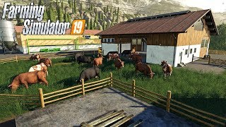 FARMING SIMULATOR 19 #162 LIVE - ALTRE MUCCHE - GAMEPLAY ITA