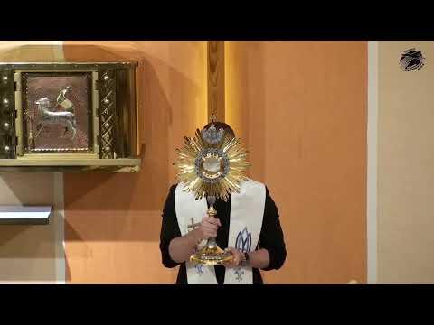 06 - o.Dominik Chmielewski SDB–Sila požehnania a prekliatia; hriechy, ktoré ničia vzťahy, rodiny