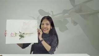 """Видео-урок Патчарапан Чантеп """"Пишем розу акварелью. Однослойная техника"""""""
