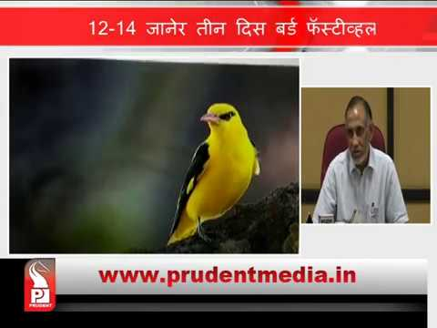3 DAYS BIRD FESTIVAL IN KHOTIGAO_Prudent Media