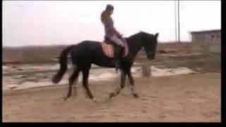 Aprilwitch на лошади