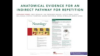 Anatomical evidence for an indirect pathway for repetition