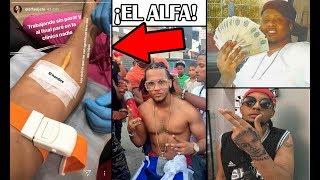 El Alfa El Jefe ESTA MAL DE SALUD, Rochy RD enseña dinero a Lapiz Conciente!