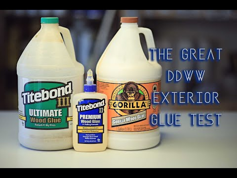 Glue Test - Which Is BEST For EXTERIOR Use? // Woodworking // DIY