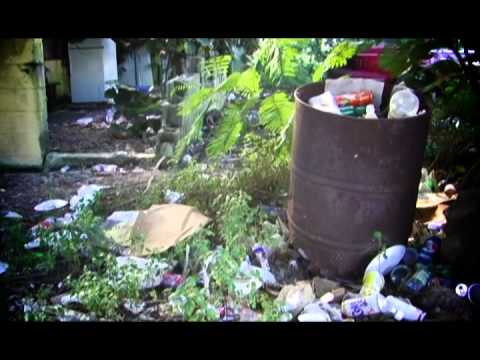 Keep Grand Bahama Clean Documentary