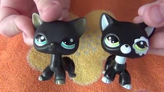 Посылка из Китая. Петы кошки стоячки.