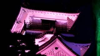 乳癌撲滅の運動で今年も高知城がピンクに照らされた 板垣退助の後ろにピ...