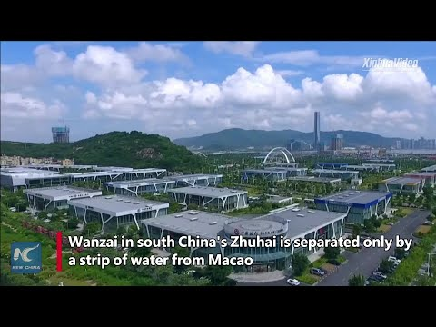 Booming fresh flower trade between Macao, south China's Zhuhai