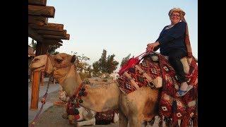 Новый год в Шарм-аль-шейхе Египет.Рекомендую