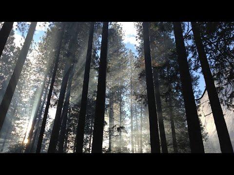 Hans Bonneval: Wahrheit heilt! Aufklärung braucht spirituelle Hintergründe