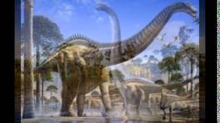 Gambar cover Dinozary-Brontozaur