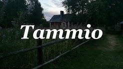 TAMMIO