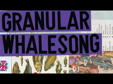 LABS Granular Whalesong