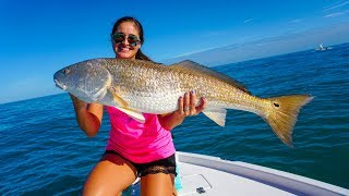 MONSTER REDFISH!! Catch Clean & Cook Snook!