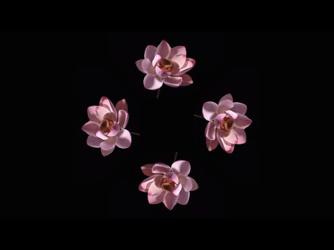 Blooming Flowers - Pyramid Hologram Screen Up