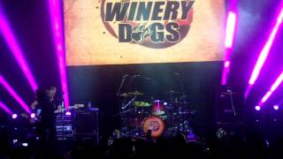 The Winery Dogs: The Other Side