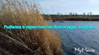 Рыбалка на голубом озере на хищника