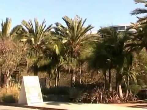 Poisoned Paradise Part 4 - Playa Vista Inside Story