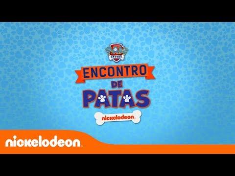 O Encontro de Patas tá chegando! | Nickelodeon em Português