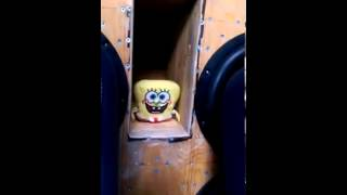 Here you can see how you can sponge bob let dance.